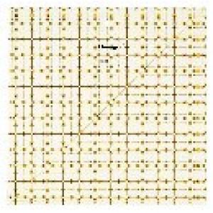 Χάρακας για πάτσγουορκ OMNIGRID 31,75x31,75cm 611 647